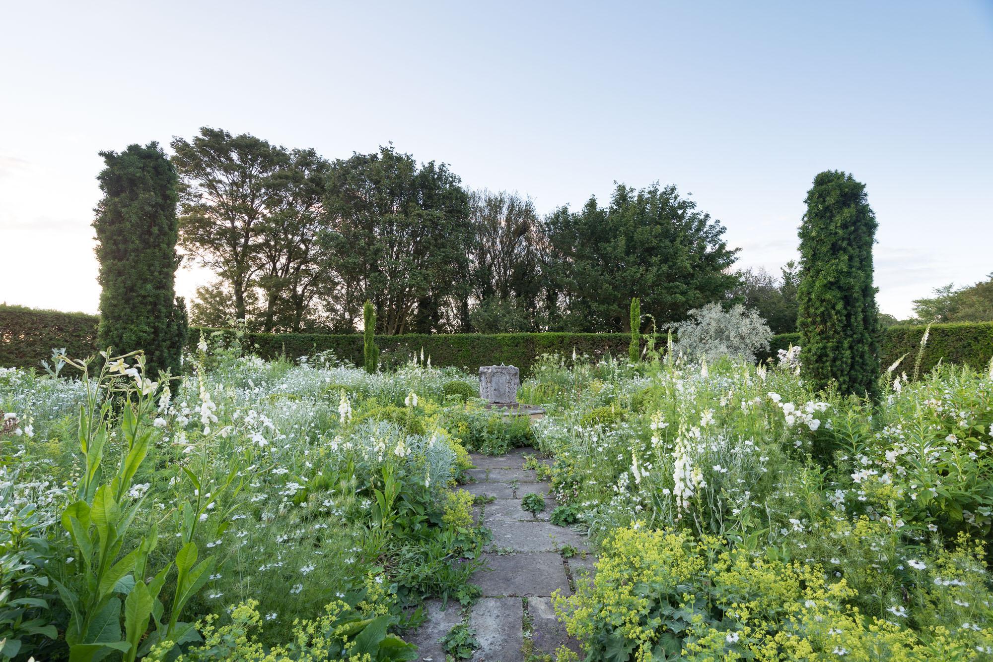 Mimi Connolly Garden Photography